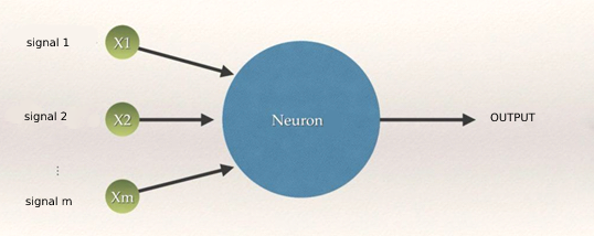 Architecture Neural Network