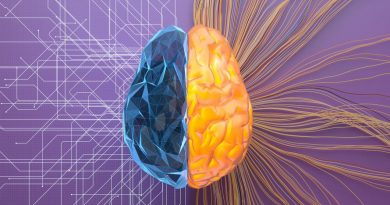 Machine learning 101: Promise, pitfalls and medicine's future